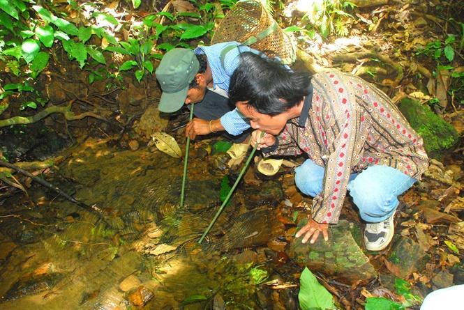 Đồng bào Hrê ở An Lão đi rừng cứ khát là uống nước suối nên dễ bị bệnh, đây là cái cớ để nảy sinh nghi kỵ cầm đồ thuốc độc