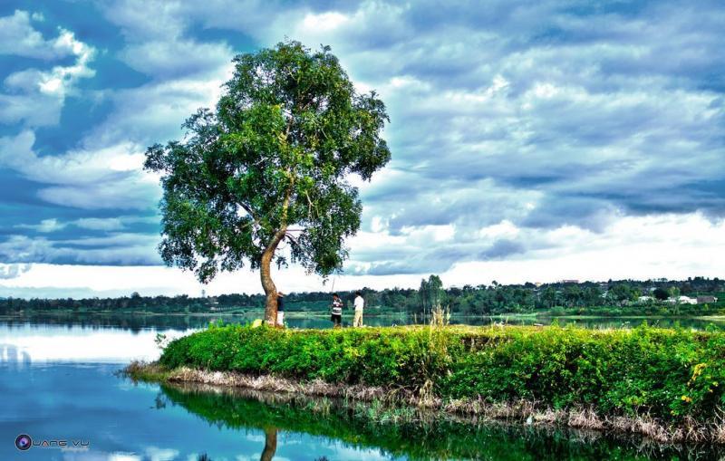 Biển Hồ chè dịu êm mênh mang - Ảnh: Đào Phúc Quang Vũ
