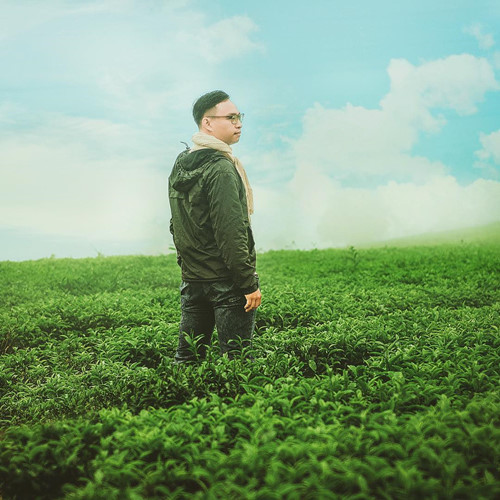 Ngắm nhìn một thảm xanh mướt của cánh đồng chè Gia Lai, bạn sẽ cảm thấy mát mắt, mát lòng và bỗng dưng những muộn phiền ngày qua được xua tan hết, chỉ còn những cảm xúc dịu êm và thư giãn.