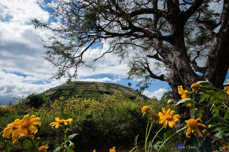 Cảnh sắc thiên nhiên quanh khu vực núi lửa rất tự nhiên, đa dạng.