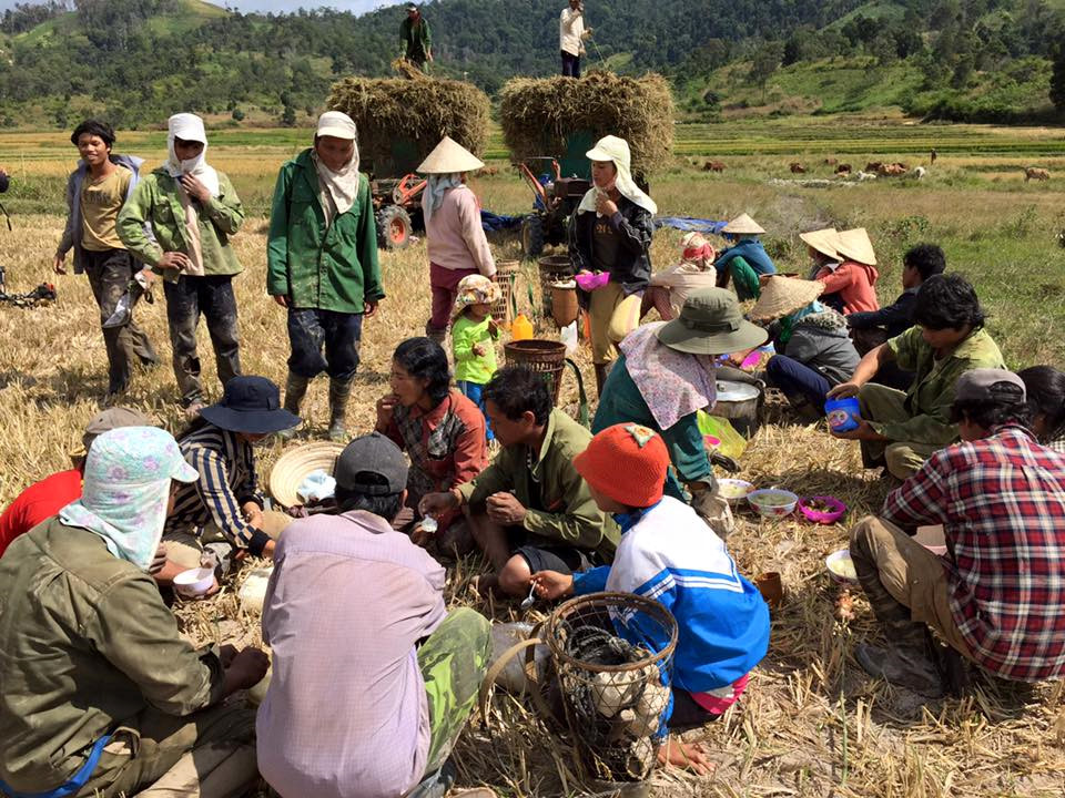Người nông dân vui vẻ tụ tập nghỉ ngơi và ăn trưa dưới chân núi.