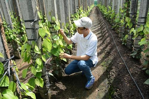 Nguyễn Tùng Linh chia sẻ, trước khu có Internet, công việc rất khó để vận hành.