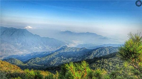 Những tia nắng đầu tiên đánh thức núi rừng giữa màn sương sớm. (Ảnh: MV Dương)