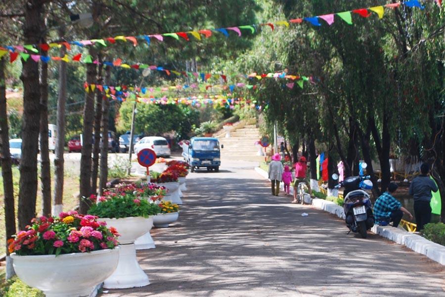 Công ty cổ phần Công trình đô thị Gia Lai đã đặt 40 chậu hoa và và trang trí 200 m2 hoa lá dọc theo các con đường trong công viên. Ảnh: Nguyễn Tú