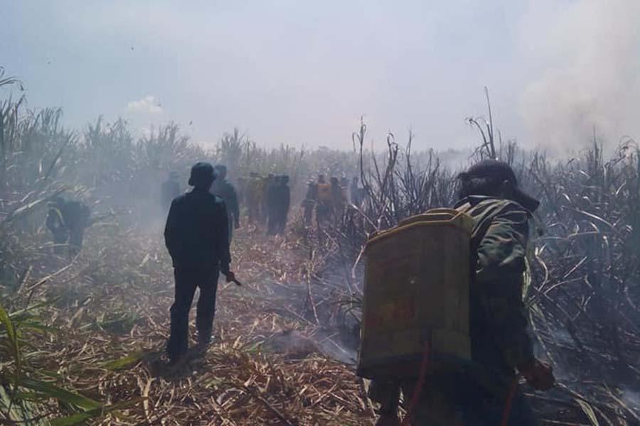 Lực lượng Dân quân thị trấn Đak Pơ tham gia dập lửa. Ảnh: Nguyễn Hiền
