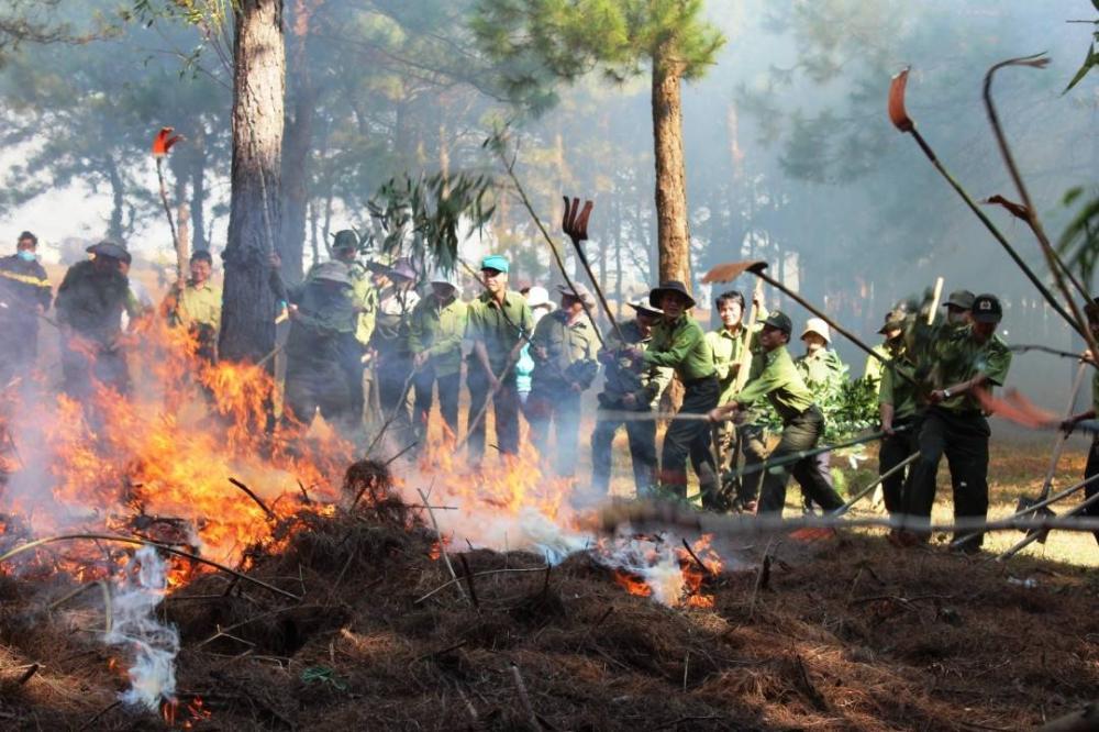 Diễn tập phòng cháy chữa cháy rừng