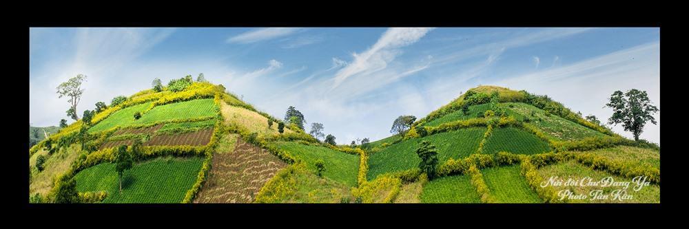 Hoa cỏ đua sắc ở núi lửa Chư Đăng Ya.