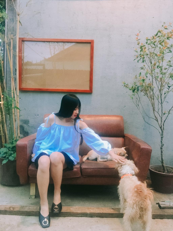 Những chú chó đáng yêu của Still. (Ảnh: Hường Trần)