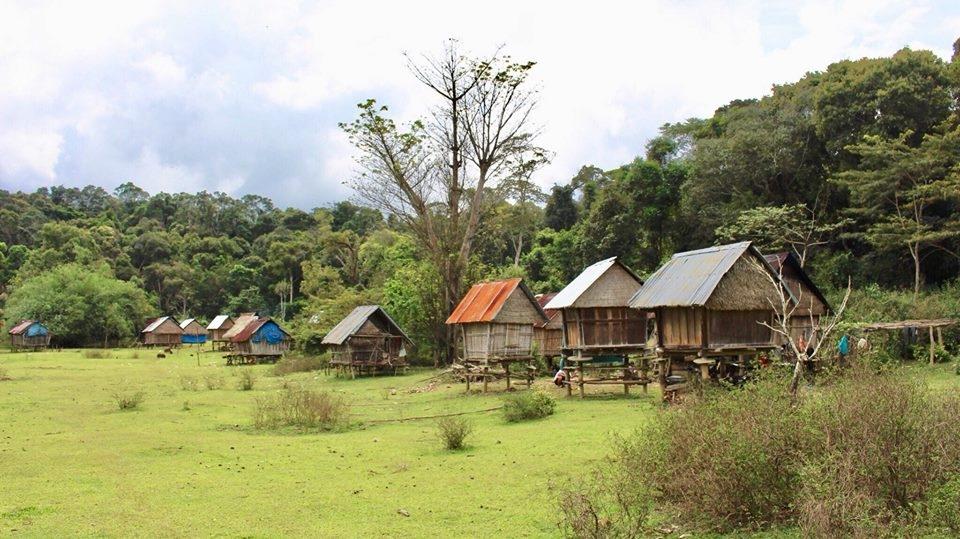 Hành trình bắt đầu di chuyển đến thác với cảnh quan hai bên bạt ngàn màu xanh của cây cối, núi rừng.