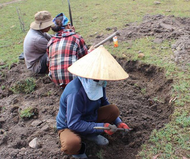 Nhiều gia đình cùng đi đào đá đen tìm vận may.