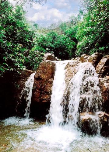 Suối Côn Sơn. (Nguồn: consonkiepbac.org.vn)
