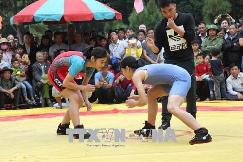 Các đô vật thi đấu tại Giải vật dân tộc tỉnh Hải Dương.