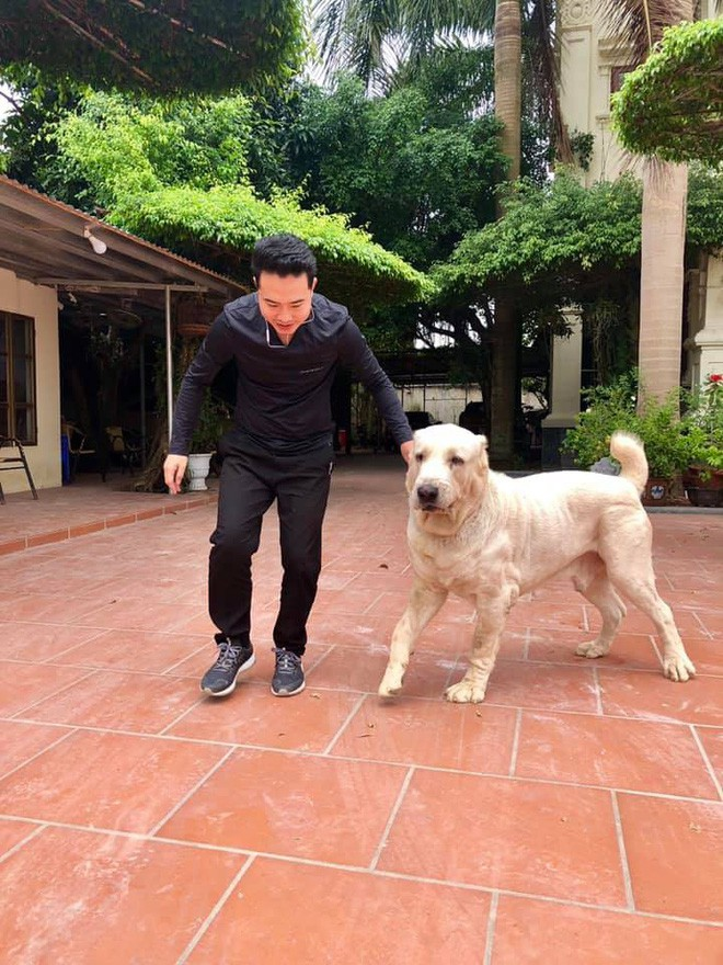 Vào sáng sớm và buổi chiều khi đi làm về, anh Đại cho chú chó đi dạo và huấn luyện nó