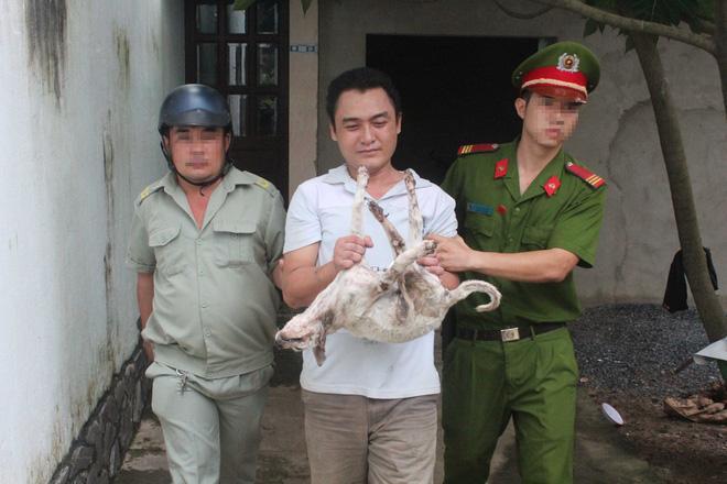 Luật sư cho rằng trong trường hợp phát hiện kẻ trộm chó, người dân không được tự ý hành động mà phải báo ngay cho cơ quan chức năng gần nhất để xử lý.