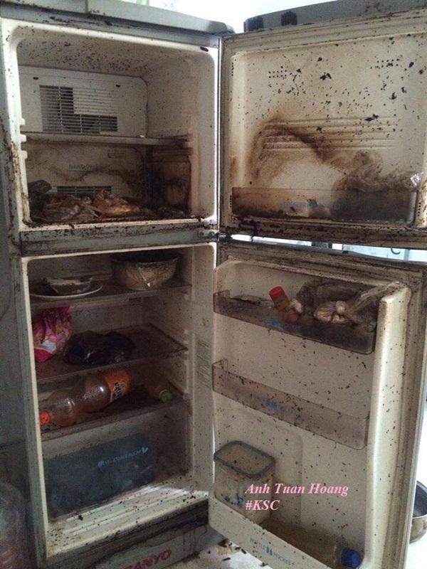 Bên trong chiếc tủ lạnh ngoài thực phẩm bị thiu thối còn có cả ổ giòi bọ, nấm mốc đen xì.