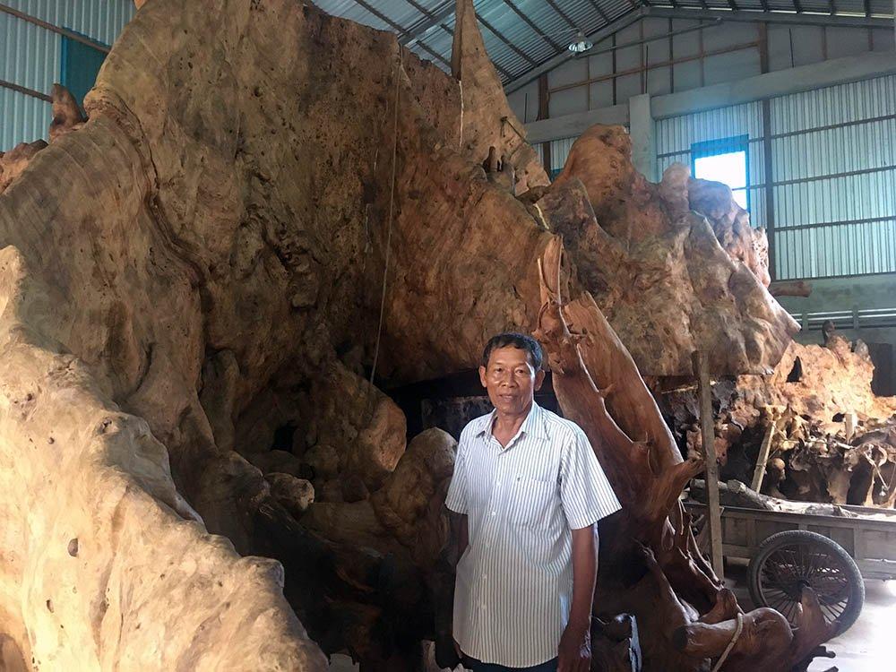 Ông Mai Kiên bên gốc cây bàng hàng trăm năm tuổi