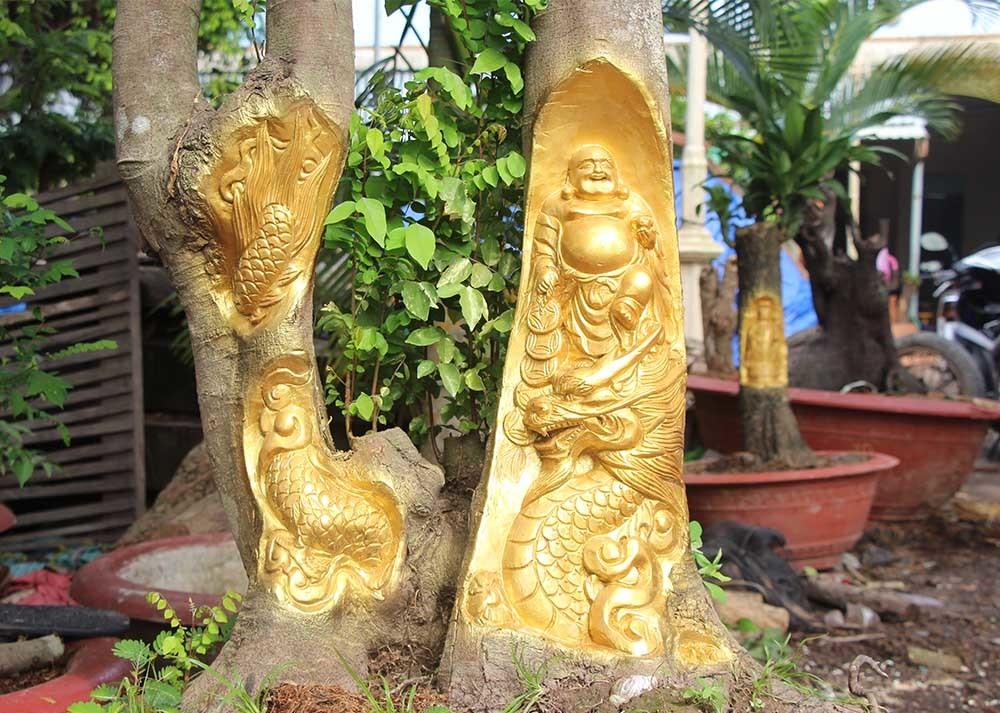 Tượng Phật Di Lặc cưỡi rồng, Long Tranh Hổ Đấu hiện hình trên cây khế, mận già