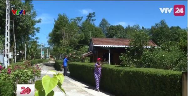 """""""KỲ LẠ"""" ngôi làng ở Hà Tĩnh vắng bóng bê-tông, tường gạch mà chỉ thấy mướt mắt với bờ rào cây xanh"""