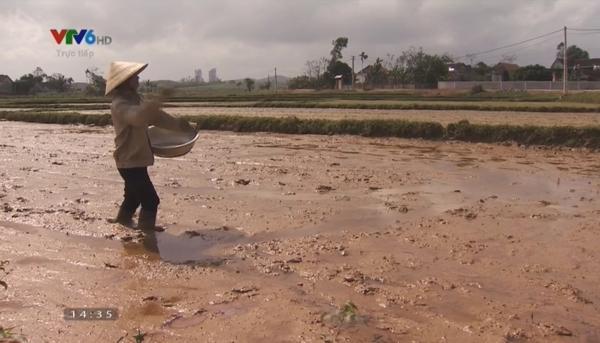 """Bố mẹ Xuân Mạnh làm nghề thuần nông, quanh năm """"bán mặt cho đất bán lưng cho trời""""."""