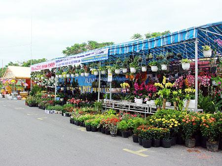 Kết quả hình ảnh cho chợ hoa hậu giang