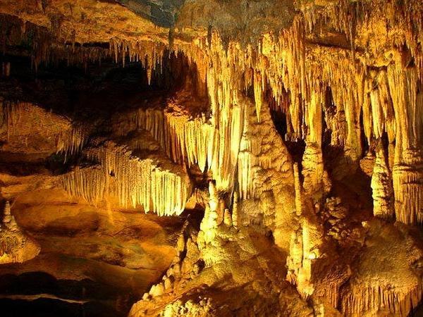 Dưới ánh đèn vô vàn các nhũ đá, cột đá hiện ra với nhiều hình thù rất đẹp mắt