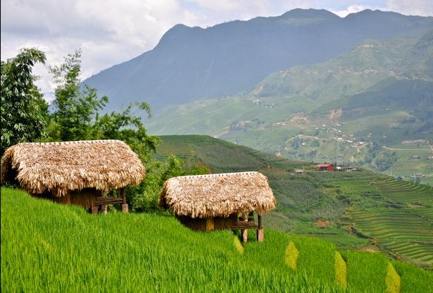 Hmong moutain Sapa cũng đang là nơi trú chân được nhiều