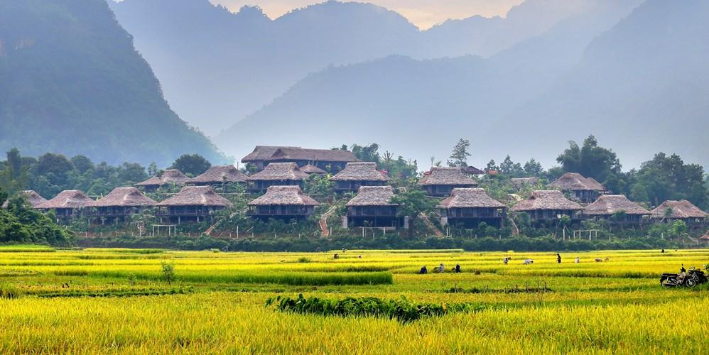 Nằm giữa đồng lúa, những homestay trong khu Mai Chau Ecolodge (Hòa Bình) trở thành nơi đi trốn được ưa thích vào mùa lúa chín. Ảnh: Xuyenviettourism.