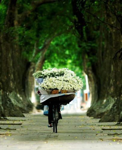 Bắt gặp những gánh hoa trên khắp các con phố. Ảnh: Vnexpress