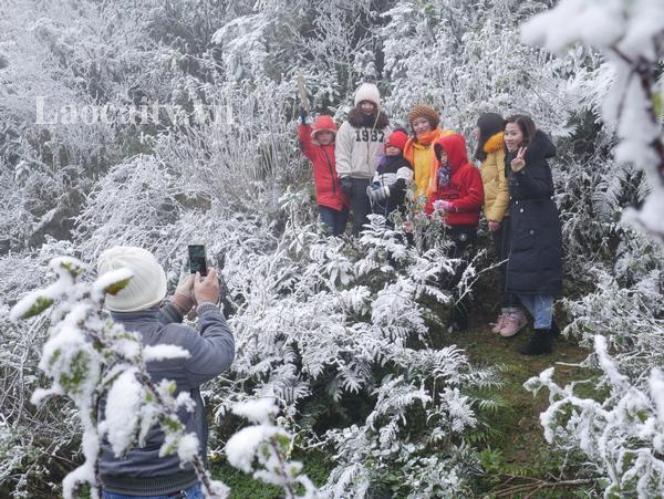 Sa Pa mùa tuyết trắng hấp dẫn du khách mọi miền.
