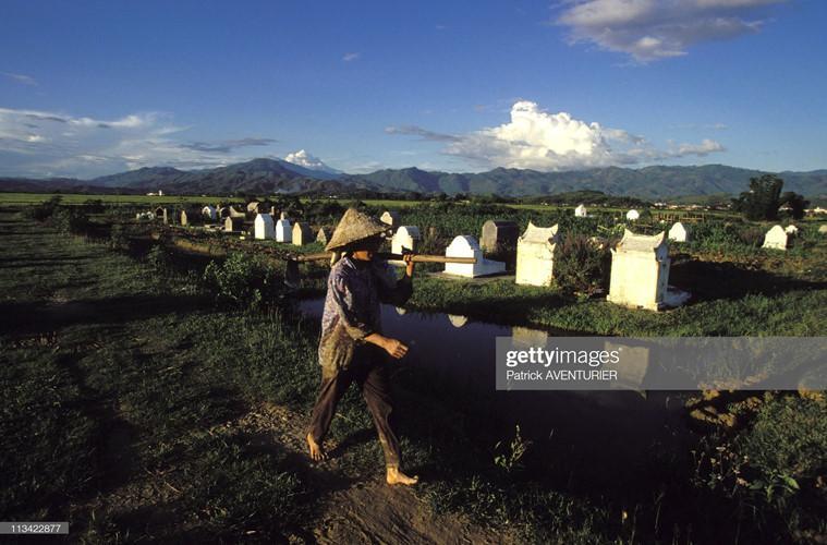 Những nấm mộ của người dân trên cánh đồng Mường Thanh.