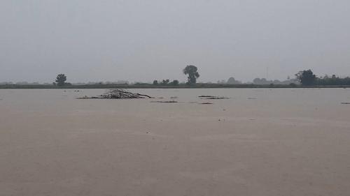 Lũ trên sông Dinh (Khánh Hòa) đang lên nhanh, có khả năng đạt đỉnh – Ảnh minh họa