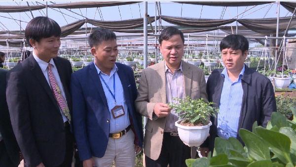 Ông Lê Quý Đôn, Chủ tịch UBND xã Xuân Quan (người thứ hai từ trái sang) đang báo cáo Hội đồng thẩm định công nhận Làng nghề trồng hoa, cây cảnh xã Xuân Quan, huyện Văn Giang.