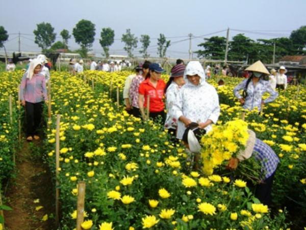Nhiều hộ dân ở Xuân Quan thoát nghèo và vươn lên làm giàu từ nghề trồng hoa cây cảnh. Nguồn: Internet