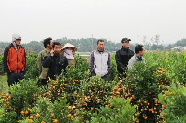 gười  dân địa phương thông 7 xã Hợp Tiến, Triệu Sơn (Thanh Hóa) hoang mang trước việc kẻ xấu hãm hại bà con nông dân.
