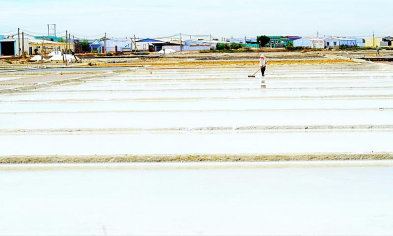 Nhắc đến miền Trung là nghĩ tới hình ảnh người nông dân tần tảo, lam lũ sớm chiều, chống chọi với thiên nhiên khắc nghiệt. Dù vậy họ vẫn hăng say lao động, tìm kiếm niềm vui trong công việc, sống bình dị và chất phác. Giữa cánh đồng bao la, thời tiết nắng gắt, người diêm dân ở Ninh Hải (Ninh Thuận) vẫn chịu khó phơi nắng phơi sương để sản xuất muối. Ảnh: Đạt Đỗ.