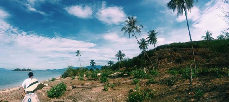 Thảm thực vật phong phú cũng là điểm nhấn thú vị và nét riêng của hòn đảo Điệp Sơn. Ảnh: Trang Moon