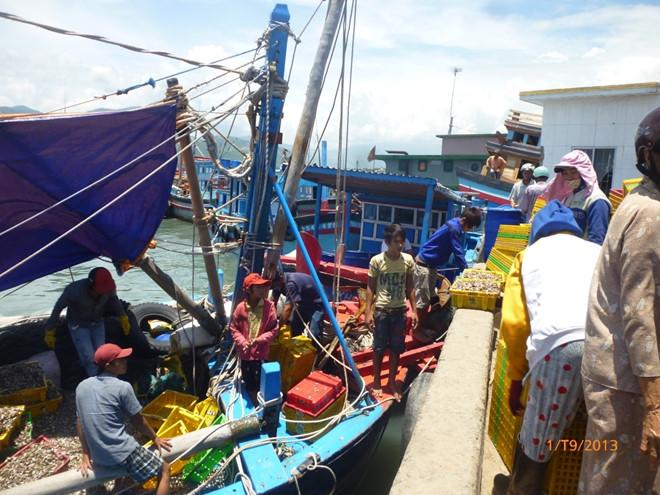 Tàu cá cập bến cảng Cam Ranh.