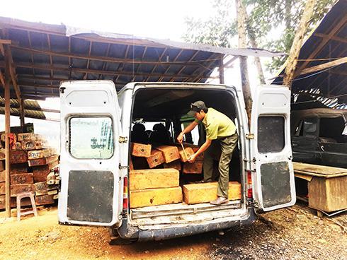 Xe ô tô khách vận chuyển lâm sản trái phép bị Đội Kiểm tra liên ngành chống phá rừng tỉnh phát hiện, xử lý