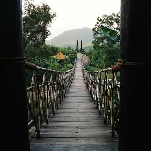 Cây cầu để du khách đi dạo, ngắm cảnh- Ảnh gavrilova-sa