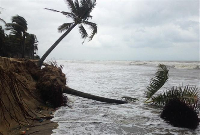 Mưa gió gây sạt lở tại bờ biển Cửa Đại.