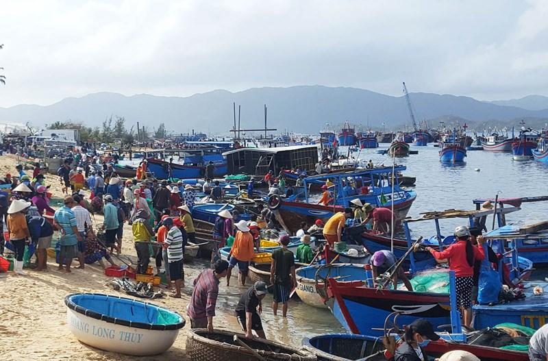 Tỉnh Khánh Hòa cấm tất cả tàu đánh bắt thủy sản, tàu du lịch, phương tiện đường thủy khác ra khơi từ 12g ngày 18-11. Ảnh: TẤN LỘC