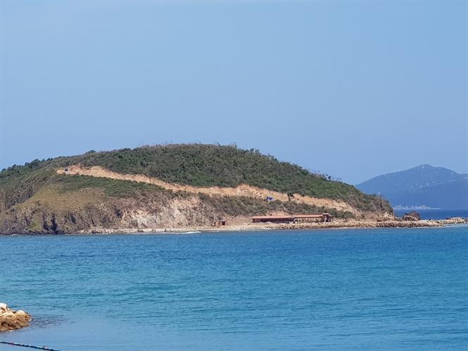 Dự án Trồng rừng, nuôi rong biển kết hợp du lịch sinh thái đảo Hòn Rùa