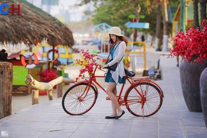 Để đến đây bạn tìm tới công viên Bốn Mùa trên đường Trần Phú. Du khách được tham quan và chụp ảnh miễn phí.