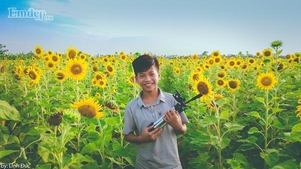 Nụ cười rạng rỡ bên hoa hướng dương