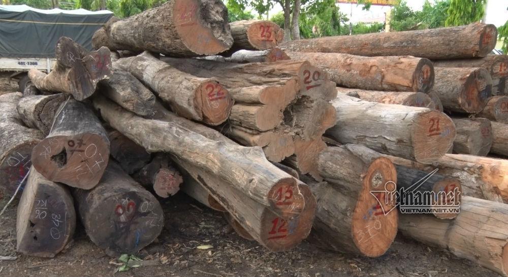 Xe tải chở gỗ của Phượng