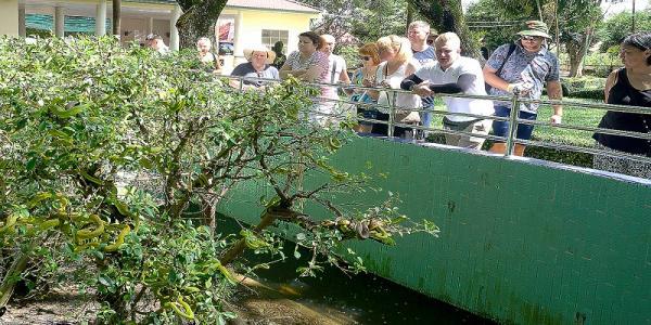 Nhiều du khách Nga tham quan Trại rắn Đồng Tâm.