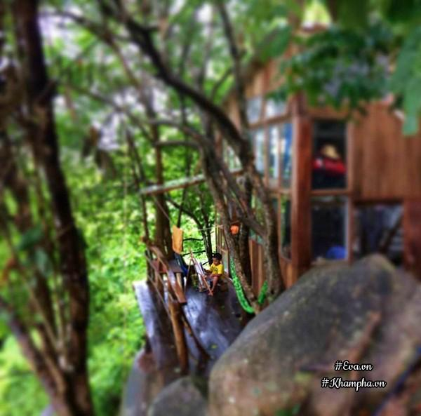Bỏ phố lên rừng, vị đạo diễn tự tay xây nhà gỗ đẹp ngỡ ngàng giữa đại ngàn, biển khơi - 10