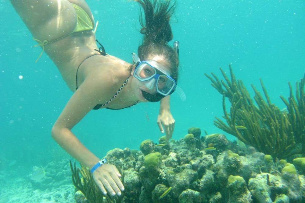 Lặn ngắm san hô ở Phú Quốc cũng tuyệt vời, với làn nước biển trong xanh, nhiều rạn san hô đẹp.