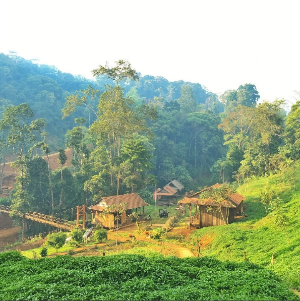 Thung lũng giữa rừng xanh.