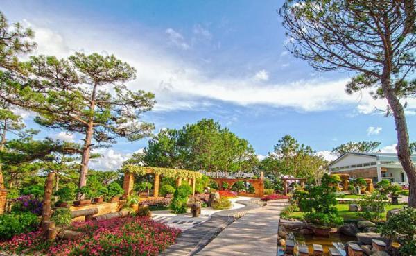 Đồi Vọng Cảnh - Nơi đẹp nhất ở thung lũng Tình yêu (Nguồn: baolamdong.vn)